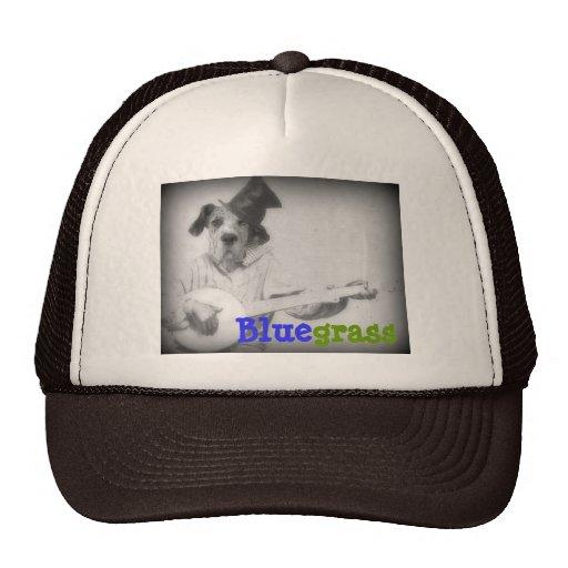 """Bluegrass"" -Trucker Hat - Adjustable"