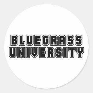 Bluegrass University Round Stickers