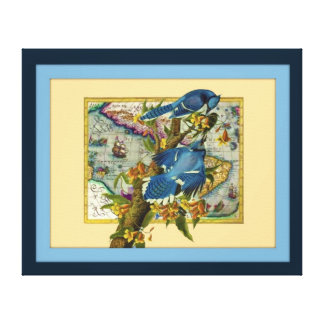bluejays stretched canvas print