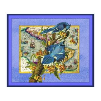 Bluejays Stretched Canvas Prints