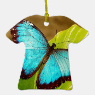 blueMorphoZ.jpg Ceramic T-Shirt Decoration