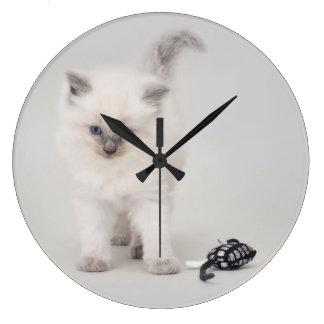Bluepoint Ragdoll Kitten Clock