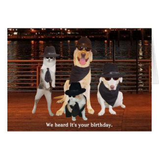 Blues Brothers Dogs & Cats Greeting Card