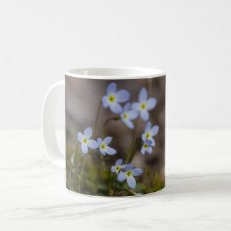 Bluets Little Purple Flowers Wildflower Mug Cup
