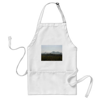 Bluff Knoll Of Stirling Ranges With Cloud Blanket Aprons