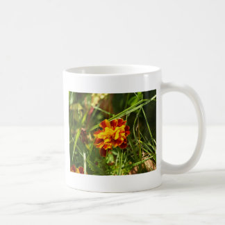 blume blumendesign coffee mug