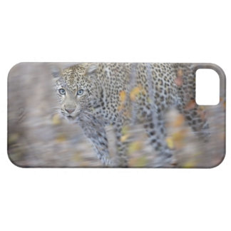 blurred motion iPhone 5 covers