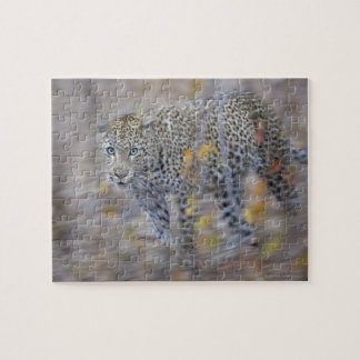 blurred motion jigsaw puzzle