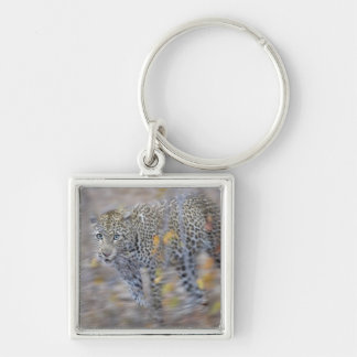 blurred motion key ring