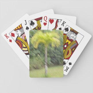 Blurred palm tree Hawaiian Style Playing cards