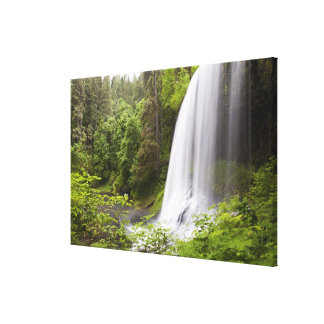 Blurred Waterfall and Forest View in Oregon Canvas Print