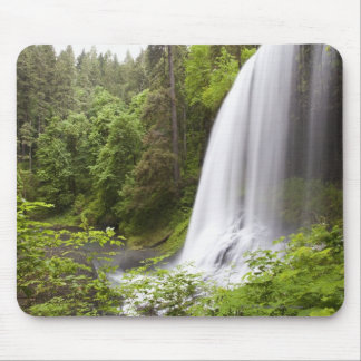 Blurred Waterfall and Forest View in Oregon Mouse Pad