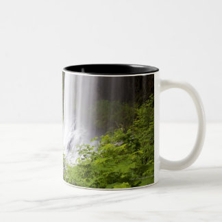 Blurred Waterfall and Forest View in Oregon Two-Tone Coffee Mug