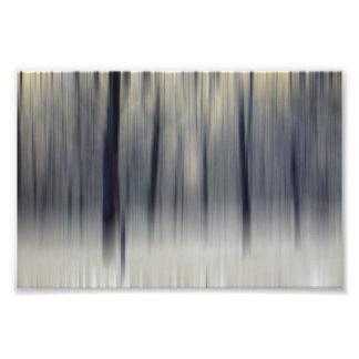 Blurred Wintry Wood Photo Print