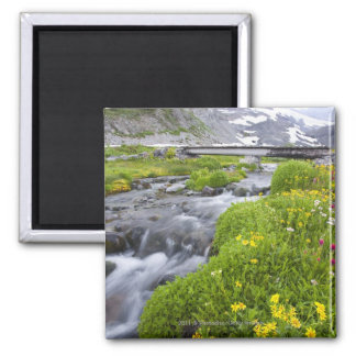 Blurry River with Yellow White Pink Wildflowers Magnet