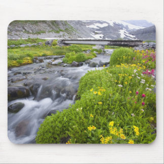 Blurry River with Yellow White Pink Wildflowers Mouse Mat