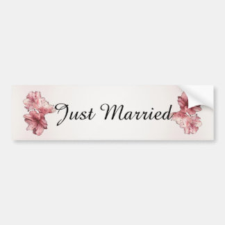 Blush and Pink Illustrated Flowers Customize Sets Car Bumper Sticker