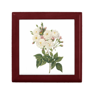 blush noisette rose(Rosa noisettiana) by Redouté Small Square Gift Box