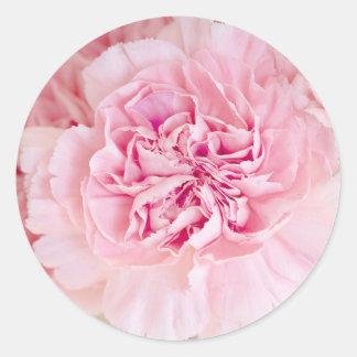 Blush Pink Carnations Round Sticker
