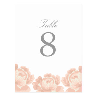 Blush Pink Roses Table Number Post Cards