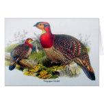 Blyth's Tragopan aka Horny Pheasant - J.Gould 1883