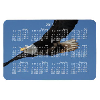 BMIS Bald Eagle on a Mission Rectangular Photo Magnet