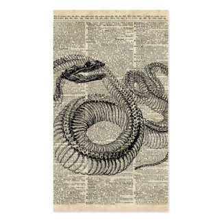 Boa Snake Skeleton Vintage Dictionary Page Art Pack Of Standard Business Cards