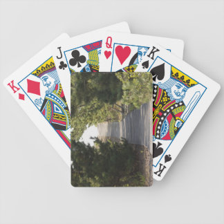 Boardwalk footpath through evergreen bicycle playing cards