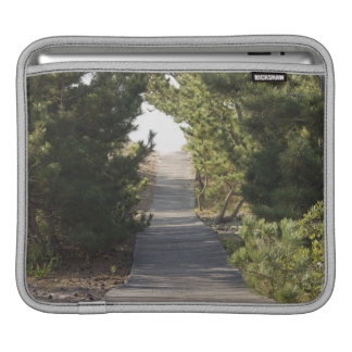 Boardwalk footpath through evergreen iPad sleeve