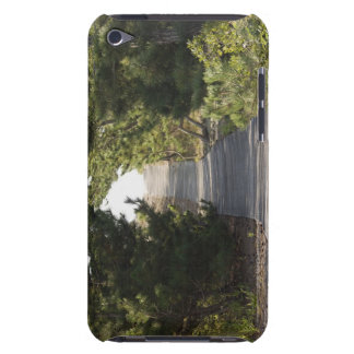 Boardwalk footpath through evergreen iPod touch cover