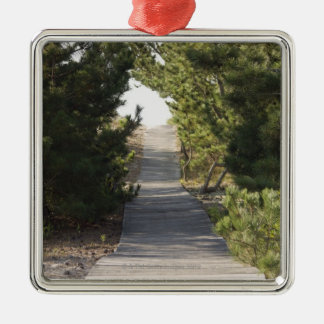 Boardwalk footpath through evergreen Silver-Colored square decoration