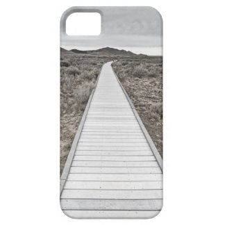 Boardwalk through the desert case for the iPhone 5