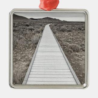 Boardwalk through the desert christmas ornament
