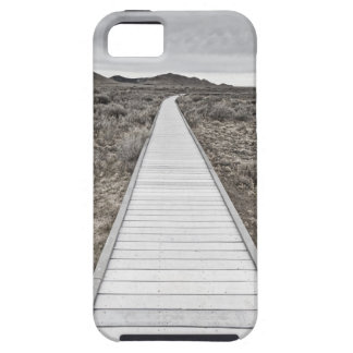 Boardwalk through the desert iPhone 5 cases