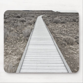 Boardwalk through the desert mouse mat