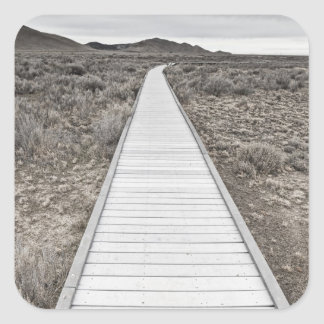 Boardwalk through the desert square sticker