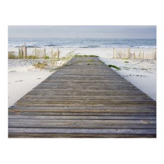 Boardwalk to Beach Cards Postcard