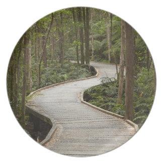 Boardwalk to Nelson Falls, Franklin - Gordon Dinner Plate