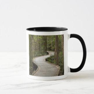 Boardwalk to Nelson Falls, Franklin - Gordon Mug