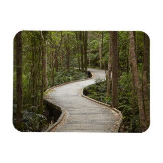 Boardwalk to Nelson Falls, Franklin - Gordon Rectangular Photo Magnet