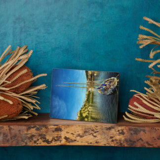 Boat Approaching Shore | Agropoli Display Plaque
