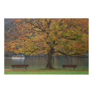 Boat on a lake in fall, Germany Wood Canvas