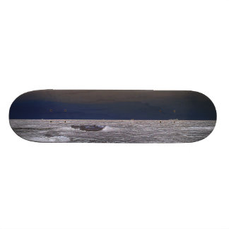 Boats in the ice sea from the coast skate board