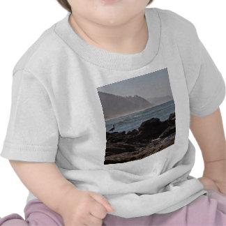 Bob Creek wayside Beach, Oregon Tshirts