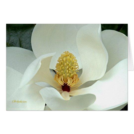 Bobby's Magnolia I Card