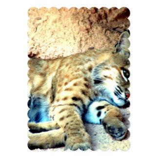 bobcat-4 13 cm x 18 cm invitation card