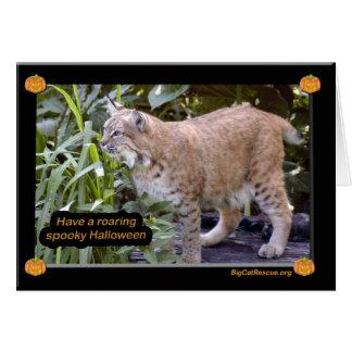 Bobcat Halloween Card Simple