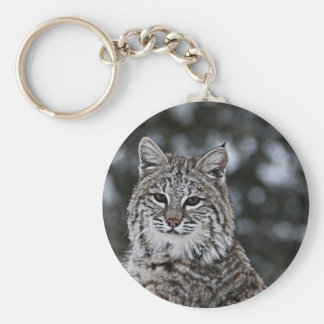 Bobcat in the Snow Key Ring