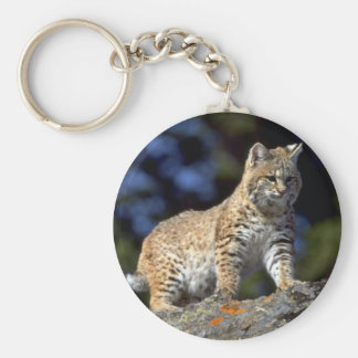 Bobcat Key Ring