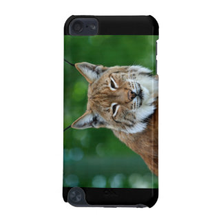 Bobcat / lynx beautiful photo ipod touch 4G case iPod Touch (5th Generation) Cover